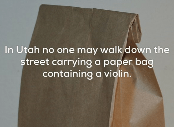 Text - In Utah no one may walk down the street carrying a paper bag containing a violin.