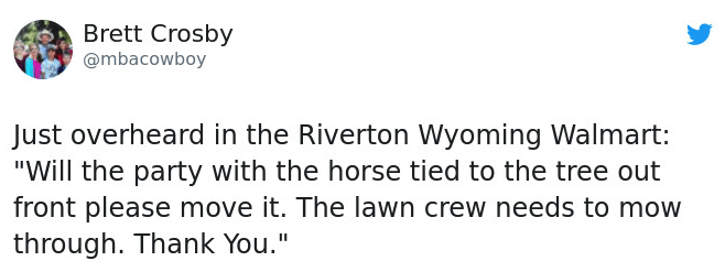 """Text - Brett Crosby @mbacowboy Just overheard in the Riverton Wyoming Walmart: """"Will the party with the horse tied to the tree out front please move it. The lawn crew needs to mow through. Thank You."""""""