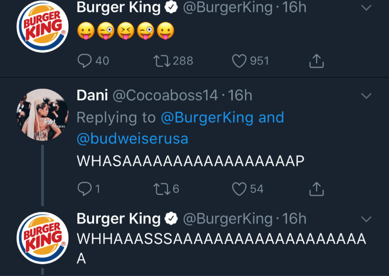 Text - BURGER Burger King @BurgerKing 16h (KING 40 L288 951 Dani @Cocoaboss14 16h Replying to @BurgerKing and MING @budweiserusa WHASAAAAАAАAAAАAAAАAАР 1 54 BURGER Burger King @BurgerKing 16h A
