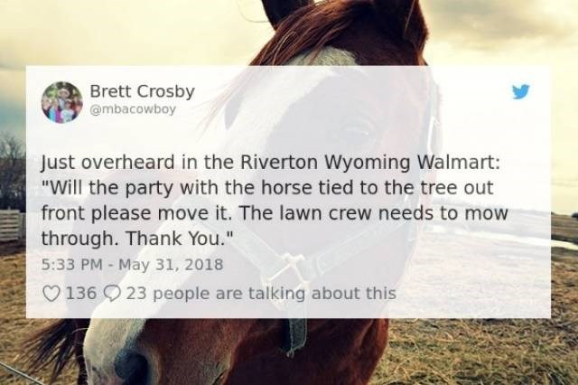 "Hair - Brett Crosby @mbacowboy Just overheard in the Riverton Wyoming Walmart: ""Will the party with the horse tied to the tree out front please move it. The lawn crew needs to mow through. Thank You."" 5:33 PM May 31, 2018 136 23 people are talking about this"
