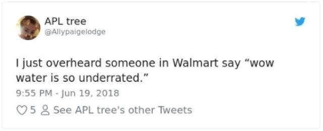 "Text - APL tree Allypaigelodge I just overheard someone in Walmart say ""wow water is so underrated."" 9:55 PM -Jun 19, 2018 58 See APL tree's other Tweets"