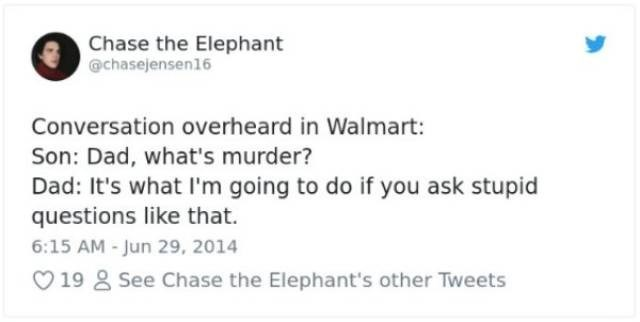 Text - Chase the Elephant @chasejensen16 Conversation overheard in Walmart: Son: Dad, what's murder? Dad: It's what I'm going to do if you ask stupid questions like that. 6:15 AM-Jun 29, 2014 V19 See Chase the Elephant's other Tweets