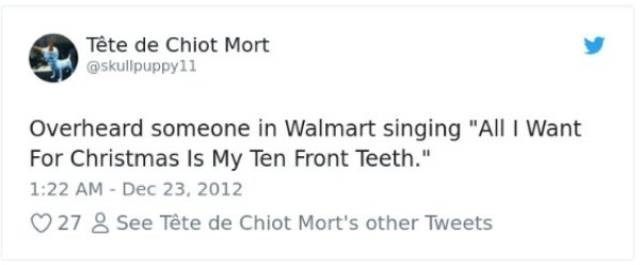 "Text - Tête de Chiot Mort skullpuppy11 Overheard someone in Walmart singing ""All I Want For Christmas Is My Ten Front Teeth."" 1:22 AM - Dec 23, 2012 27 See Tête de Chiot Mort's other Tweets"