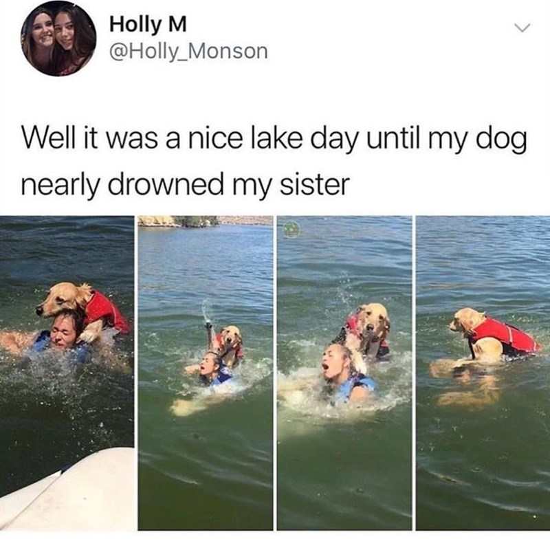 Water - Holly M @Holly_Monson Well it was a nice lake day until my dog nearly drowned my sister