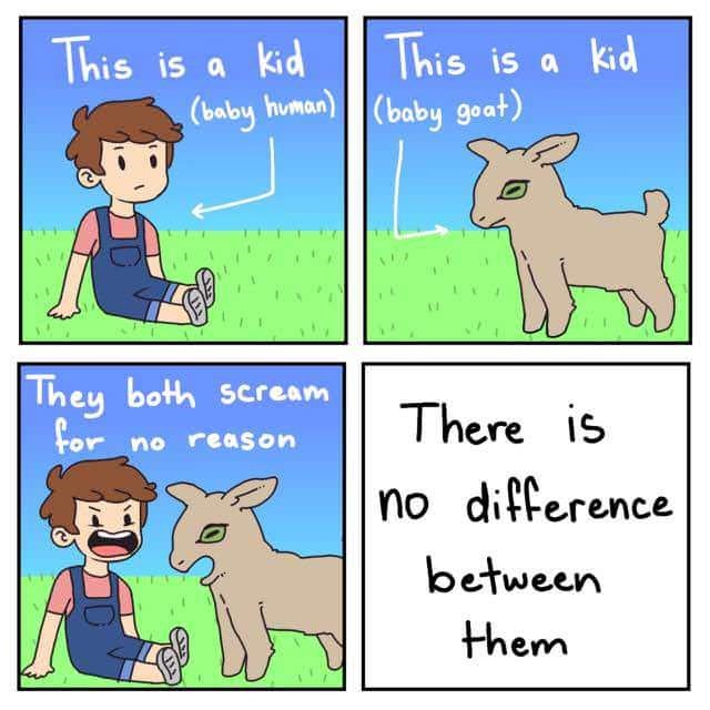 Text - This is a kid (baby human)|(baby goat) This is a kid They both scream for There is no reason no difference between them