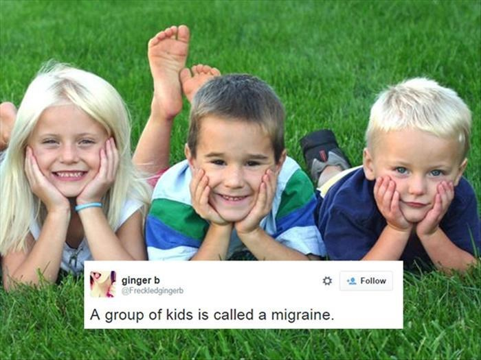People in nature - ginger b @Freckledgingerb Follow A group of kids is called a migraine.