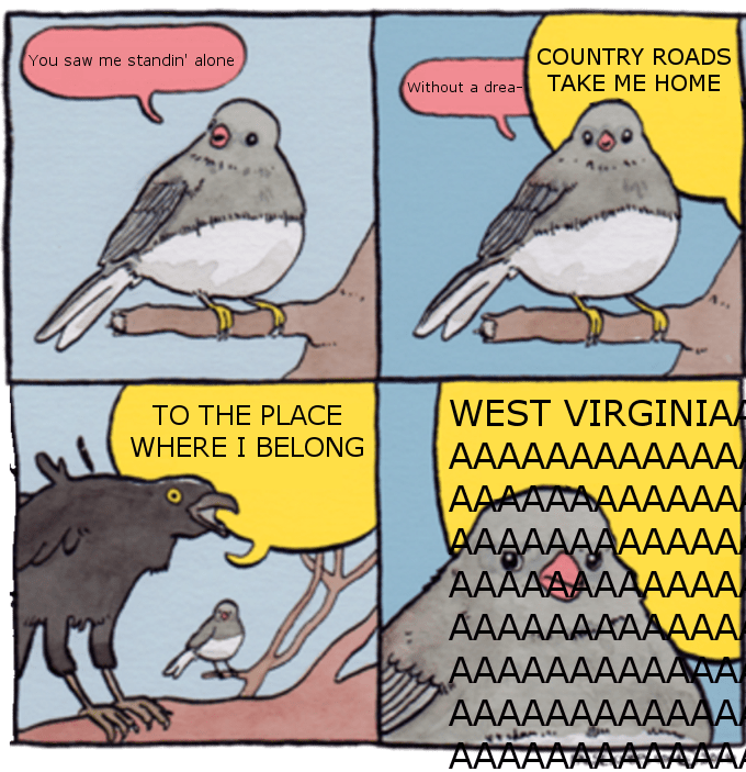 meme of birds singing country roads together