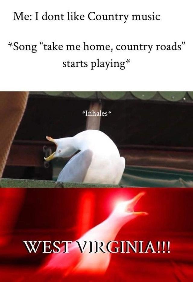 "meme about not liking country music except ""country road, take me home"""