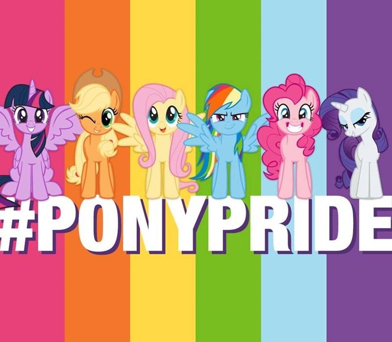 applejack twilight sparkle pride pinkie pie rarity fluttershy rainbow dash - 9183860736