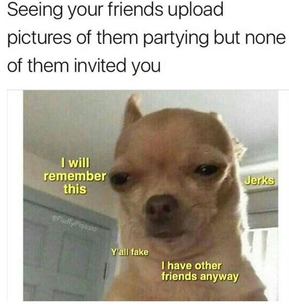dog meme about getting mad your friends ignore you with pic of chihuahua dog squinting angrily