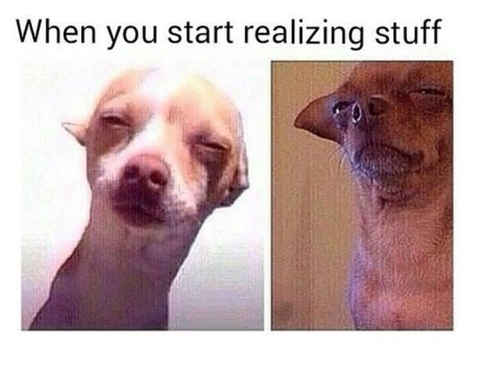 dog meme about thinking deeply with pics of chihuahua dog squinting its eyes