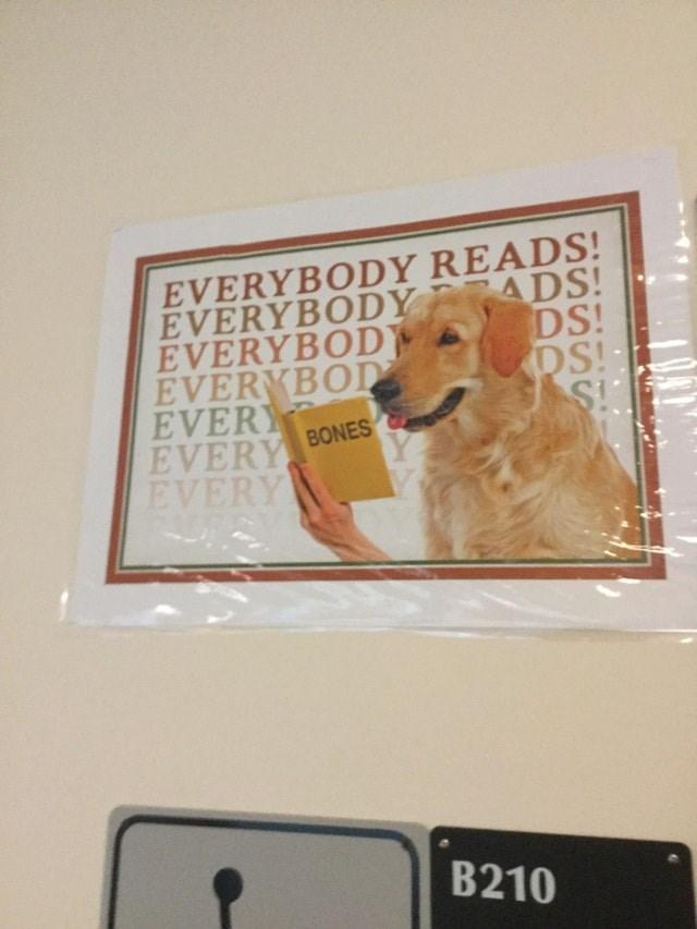 Dog - EVERYBODY READS! EVERYBODY ADS! EVERYBODY EVERYBOD EVERY EVERY BONES EVERY DS! DS! S! B210