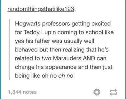harry potter meme tweet