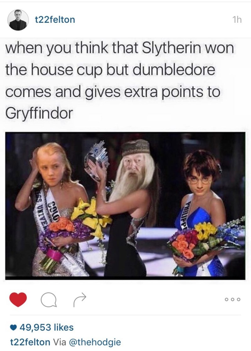 Text - t22felton 1h when you think that Slytherin won the house cup but dumbledore comes and gives extra points to Gryffindor 49,953 likes t22felton Via @thehodgie COLD S UNIVEK