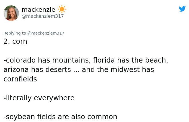 Text - mackenzie @mackenziem317 Replying to @mackenziem317 2. corn -colorado has mountains, florida has the beach, arizona has deserts.. and the midwest has cornfields -literally everywhere -soybean fields are also common