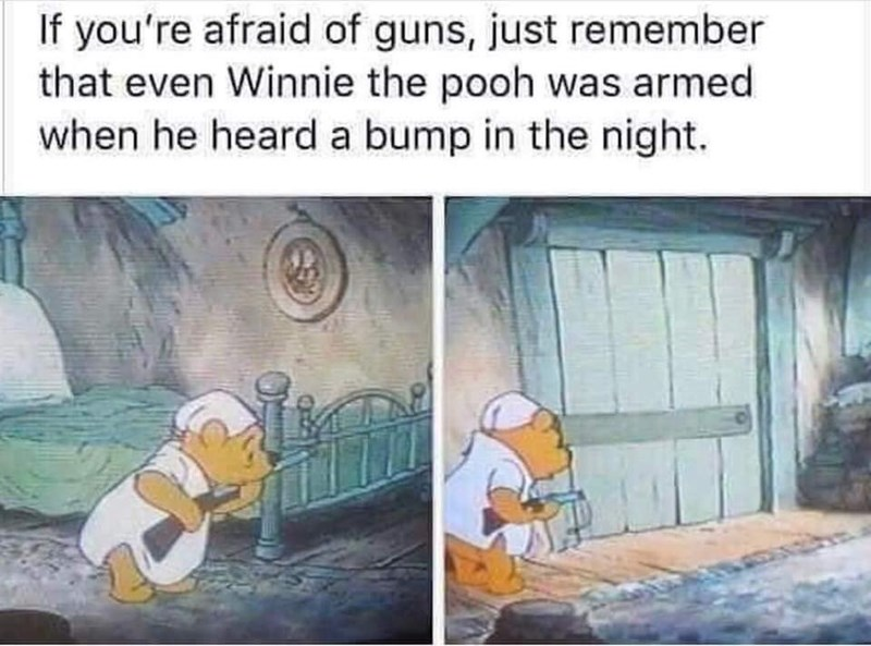Cartoon - If you're afraid of guns, just remember that even Winnie the pooh was armed when he heard a bump in the night.