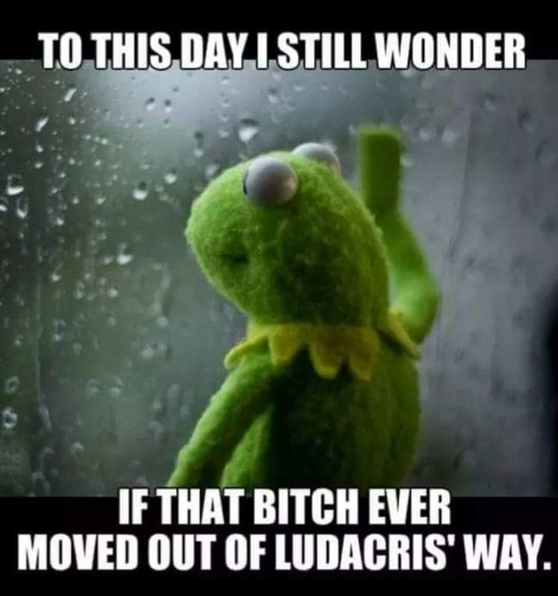 "Meme of Kermit the Frog with the caption, ""To this day I still wonder of that bitch moved out of Ludacris' way"""