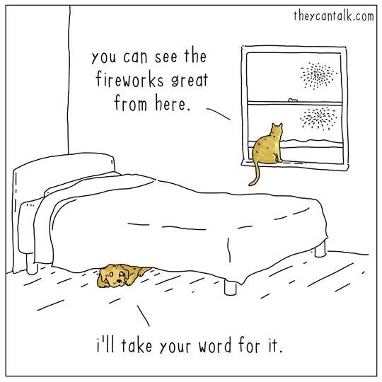 Text - theycantalk.com the fireworks great from here. YOu can see i'll take your word for it
