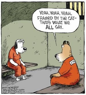 Cartoon - YEAH,YEAH, YEAH, FRAMED BY THe CAT THATS WHAT We ALL SAY 270 ascoERY SPEEDBUMP.COM