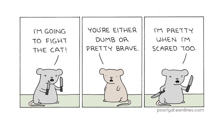 funny comic - Text - YOURE EITHER IM PRETTY IM GOING WHEN IM DUMB OR TO FIGHT PRETTY BRAVE SCARED TOO. THE CAT! poorlydrawnlines.com
