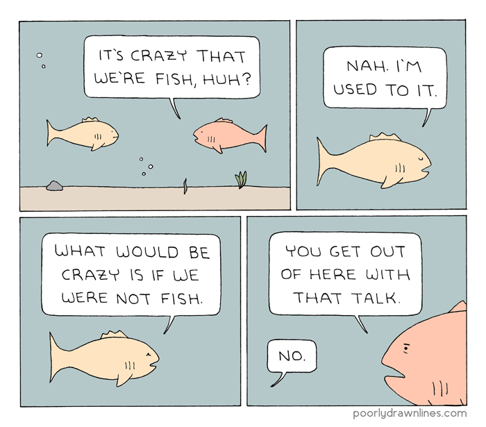 funny comic - Text - IT'S CRAZY THAT NAH. IM WE'RE FISH, HUH? USED TO IT. 111 WHAT WOULD BE YOU GET OUT OF HERE WITH CRAZY IS IF WE THAT TALK WERE NOT FISH. NO. poorlydrawnlines.com