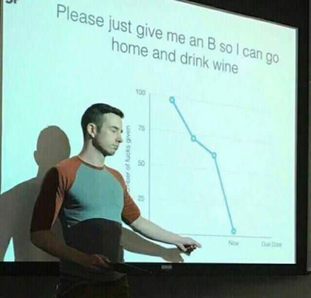 Presentation - Please just give me an B so I can go home and drink wine 100 Now