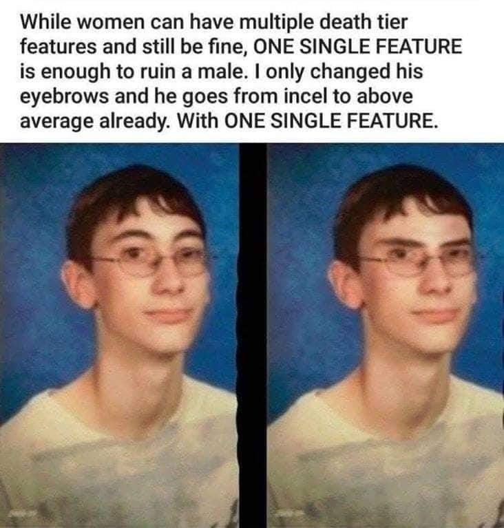 cringe neckbeard logic - Face - While women can have multiple death tier features and still be fine, ONE SINGLE FEATURE is enough to ruin a male. I only changed his eyebrows and he goes from incel to above average already. With ONE SINGLE FEATURE.