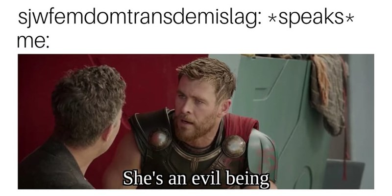 cringe neckbeard logic - Text - sjwfemdomtransdemislag: *speaks* me: She's an evil being