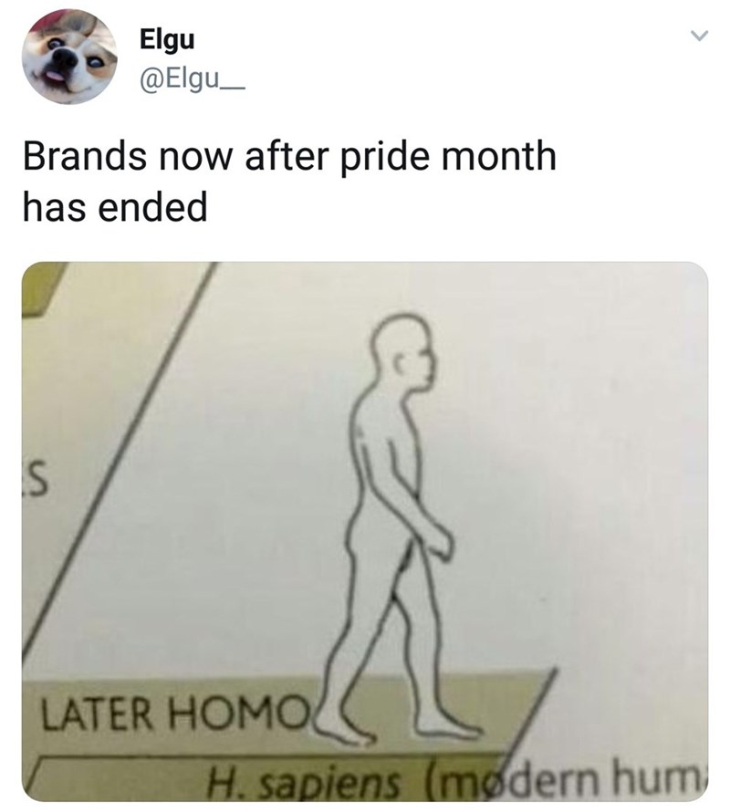 Funny meme about brands after Pride