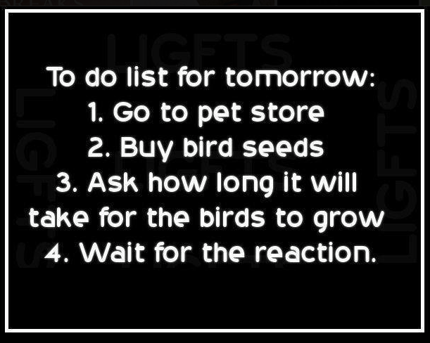 Text - To do list for tomorrow: 1. Go to pet store 2. Buy bird seeds 3. Ask how long it will take for the birds to grow 4. Wait for the reaction. LIG