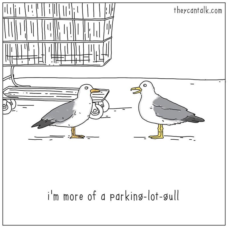 Bird - theycantalk.com i'm more of a parking-lot-gull