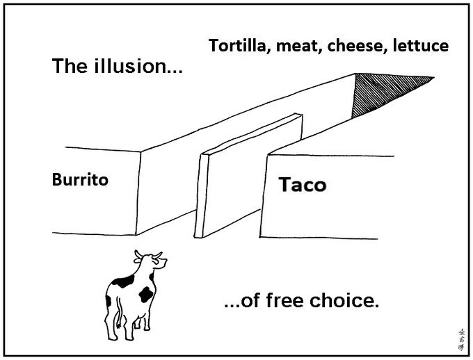 Burritos and tacos both have a tortilla, meat, cheese and lettuce