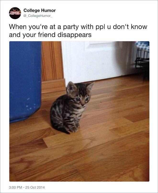Cat - College Humor CollegeHumor COLLEGE When you're at a party with ppl u don't know and your friend disappears 3:00 PM 25 Oct 2014