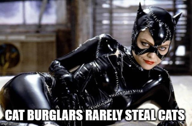 Catwoman - CAT BURGLARS RARELY STEAL CATS imgfilp.com