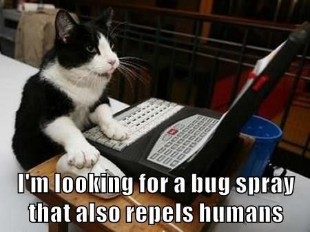 Cat - Im looking for a bug spray that also repels humans
