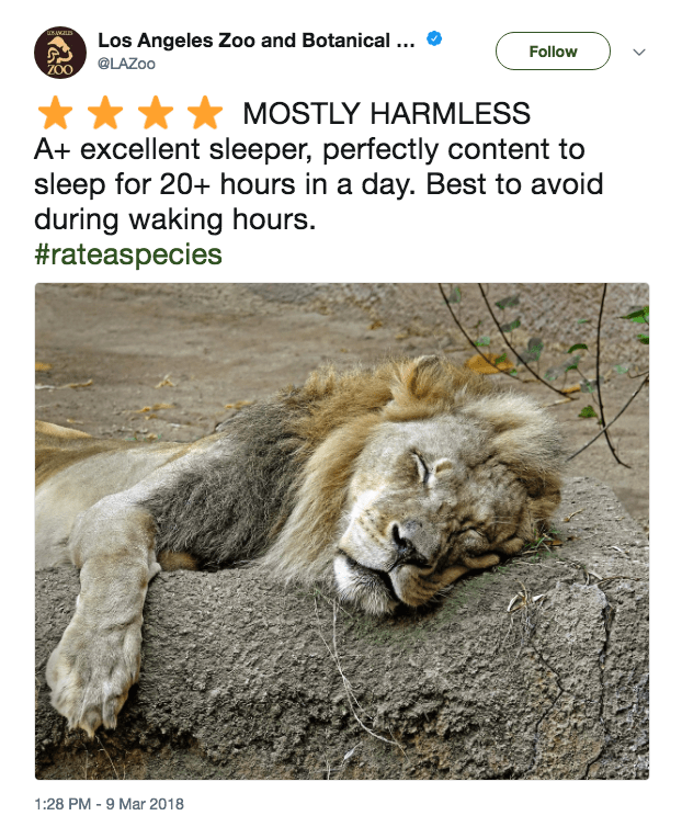 Lion - uANLES Los Angeles Zoo and Botanical ... Follow @LAZOO ZOO MOSTLY HARMLESS A+ excellent sleeper, perfectly content to sleep for 20+ hours in a day. Best to avoid during waking hours. #rateaspecies 1:28 PM 9 Mar 2018 -