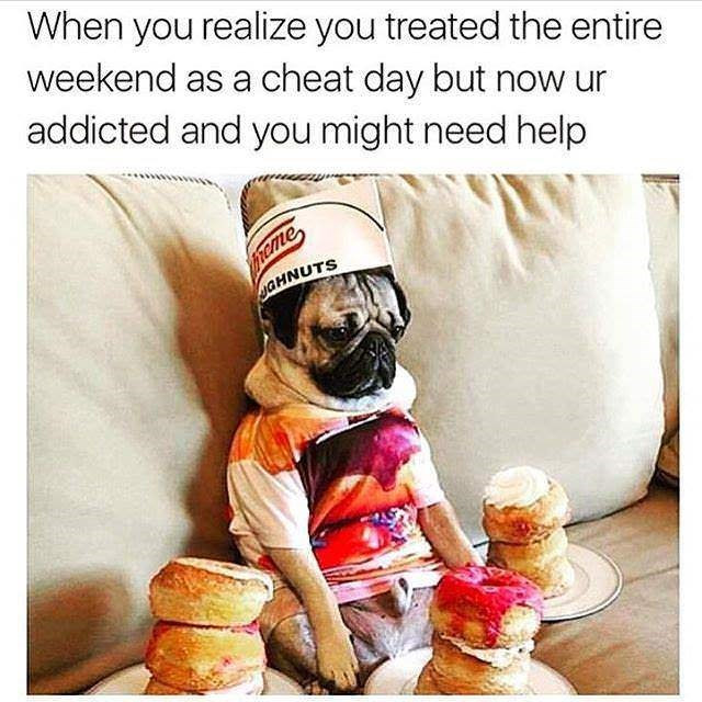 meme - Text - When you realize you treated the entire weekend as a cheat day but now ur addicted and you might need help frcme yGHNUTS