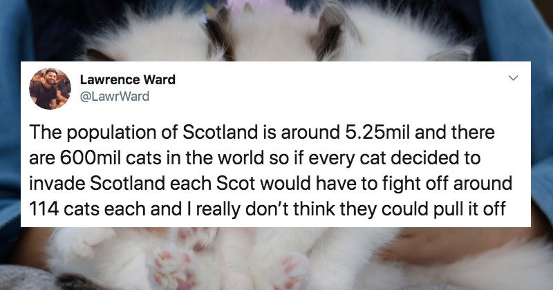Funny Twitter details how cats took over Scotland.