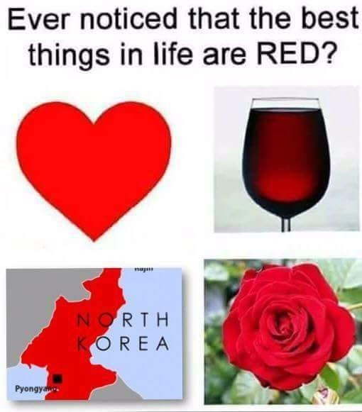 """""""Ever noticed that the best things in life are red?"""" with pictures of a heart, wine, rose and North Korea"""