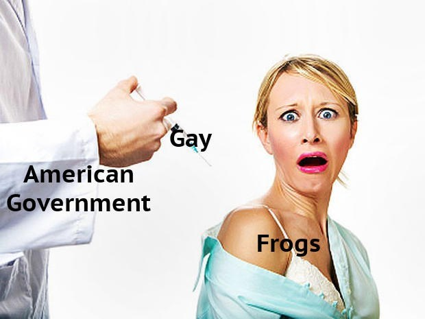 Face - tay American Government Frogs