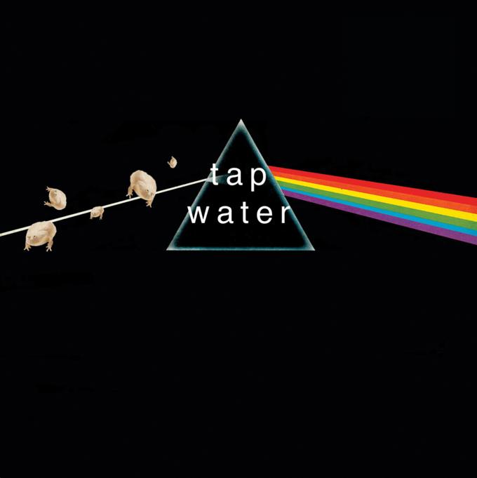 Graphic design - fap water