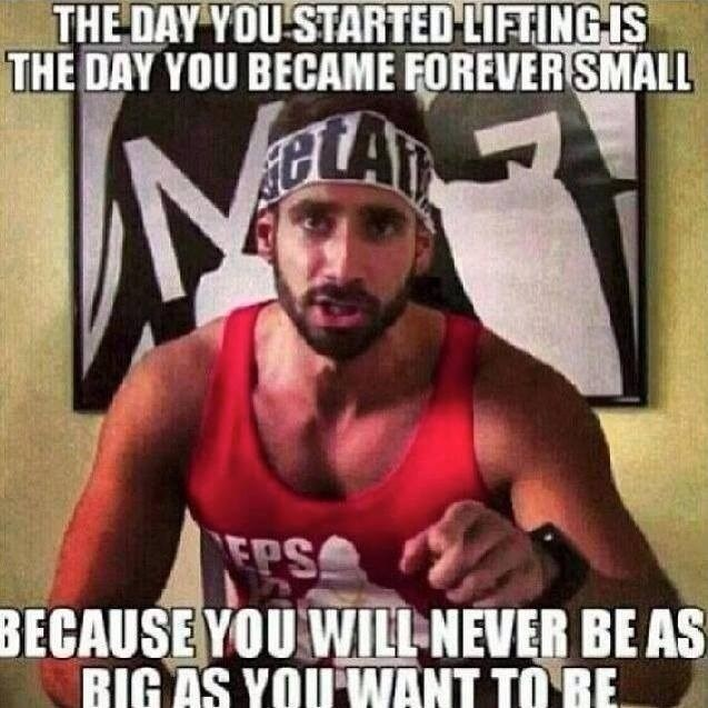 Muscle - THE DAY YOU STARTED-LIFTING IS THE DAY YOU BECAME FOREVER SMALL A EPS BECAUSE YOU WILL NEVER BE AS RIGAS YOUWANT TO RE