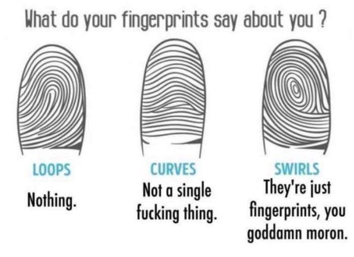 """Chart that asks what your fingerprints say about you, ends with """"they're just fingerprints, you goddamn moron"""""""