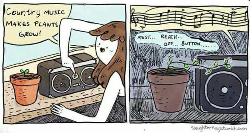 Comic that says that country music makes plants grow faster, shows the plant trying to turn the music off