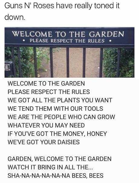 music meme - Text - Guns N' Roses have really toned it down. WELCOME TO THE GARDEN PLEASE RESPECT THE RULES WELCOME TO THE GARDEN PLEASE RESPECT THE RULES WE GOT ALL THE PLANTS YOU WANT WE TEND THEM WITH OUR TOOLS WE ARE THE PEOPLE WHO CAN GROW WHATEVER YOU MAY NEED IF YOU'VE GOT THE MONEY, HONEY WEVE GOT YOUR DAISIES GARDEN, WELCOME TO THE GARDEN WATCH IT BRING IN ALL THE... SHA-NA-NA-NA-NA-NA BEES, BEES