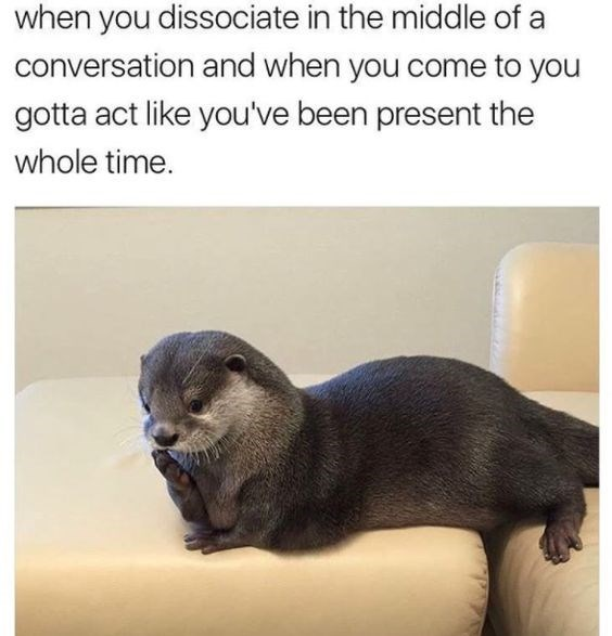 Vertebrate - when you dissociate in the middle of conversation and when you come to you gotta act like you've been present the whole time.