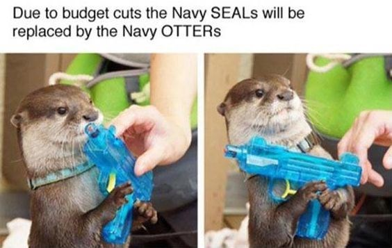 Otter - Due to budget cuts the Navy SEALS will be replaced by the Navy OTTERS