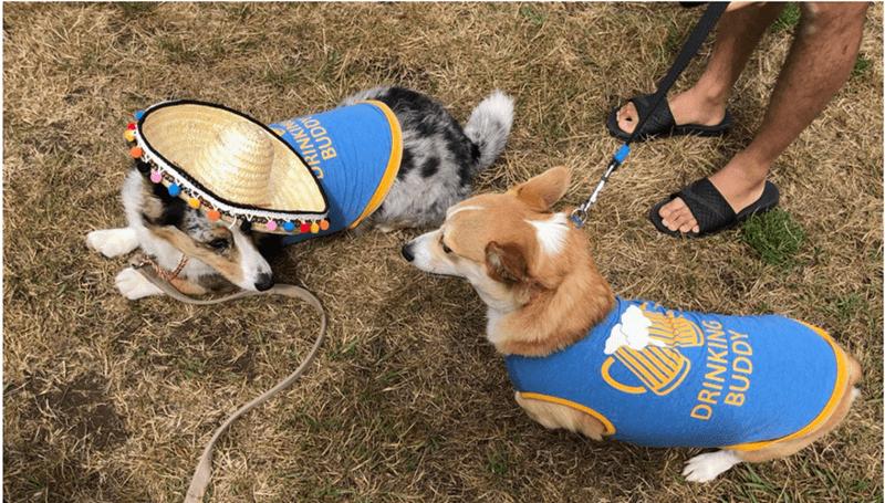 Dog - ORINKIN BUDD DRINKING BUDDY