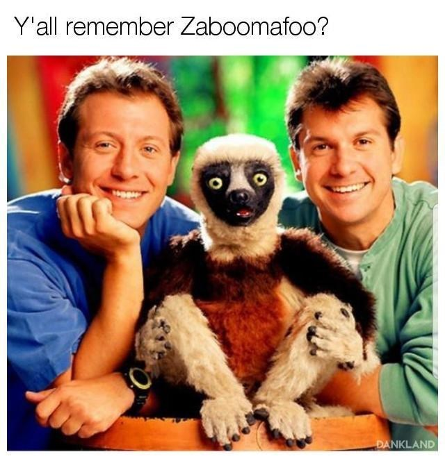 nostalgia meme of zaboomafoo