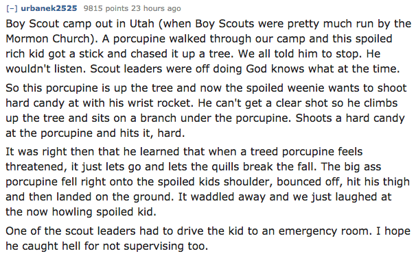 Text - [ urbanek2525 9815 points 23 hours ago Boy Scout camp out in Utah (when Boy Scouts were pretty much run by the Mormon Church). A porcupine walked through our camp and this spoiled rich kid got a stick and chased it up a tree. We all told him to stop. He wouldn't listen. Scout leaders were off doing God knows what at the time. So this porcupine is up the tree and now the spoiled weenie wants to shoot hard candy at with his wrist rocket. He can't get a clear shot so he climbs up the tree an